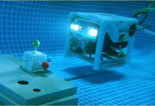 Autonomous Underwater Vehicle