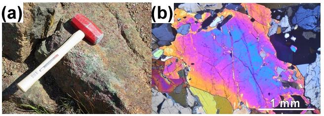 マグマ生成へ繋がる地下深部のH2O:高圧変成岩(a)とその中の含水鉱物(b)